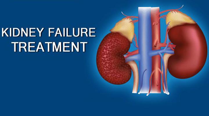 Ayurved Upchar Kendra Kidney Treatment In Pune Mumbai